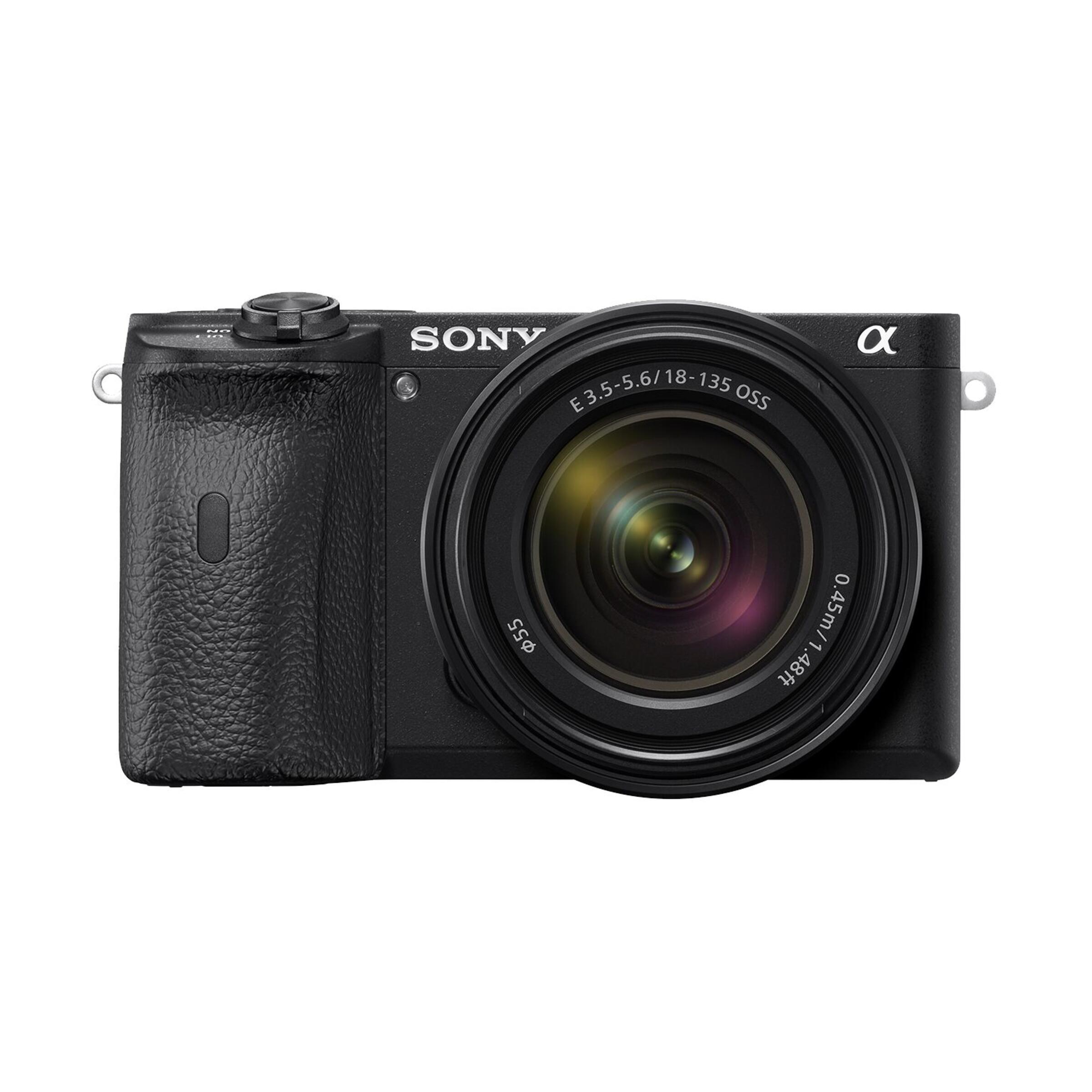 Sony Alpha 6600 + E 18-135mm