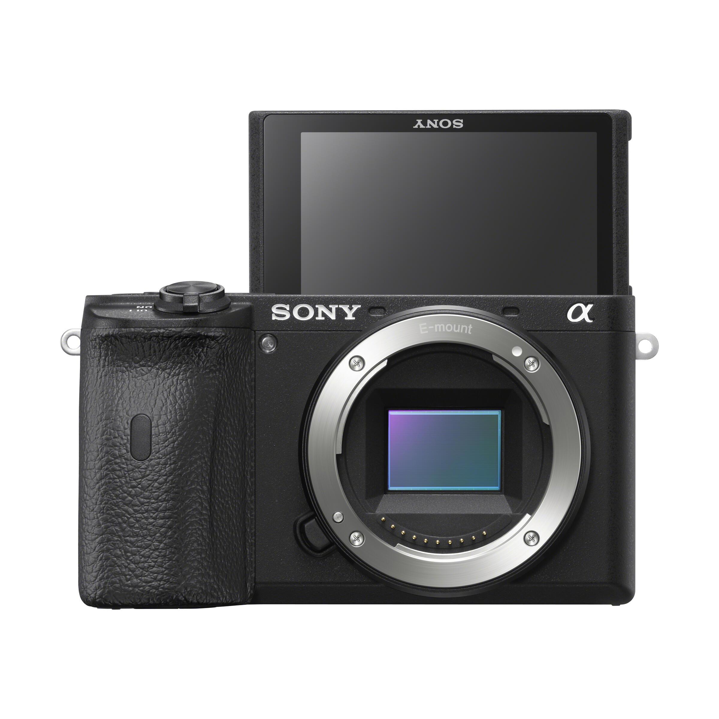 Sony Alpha 6600