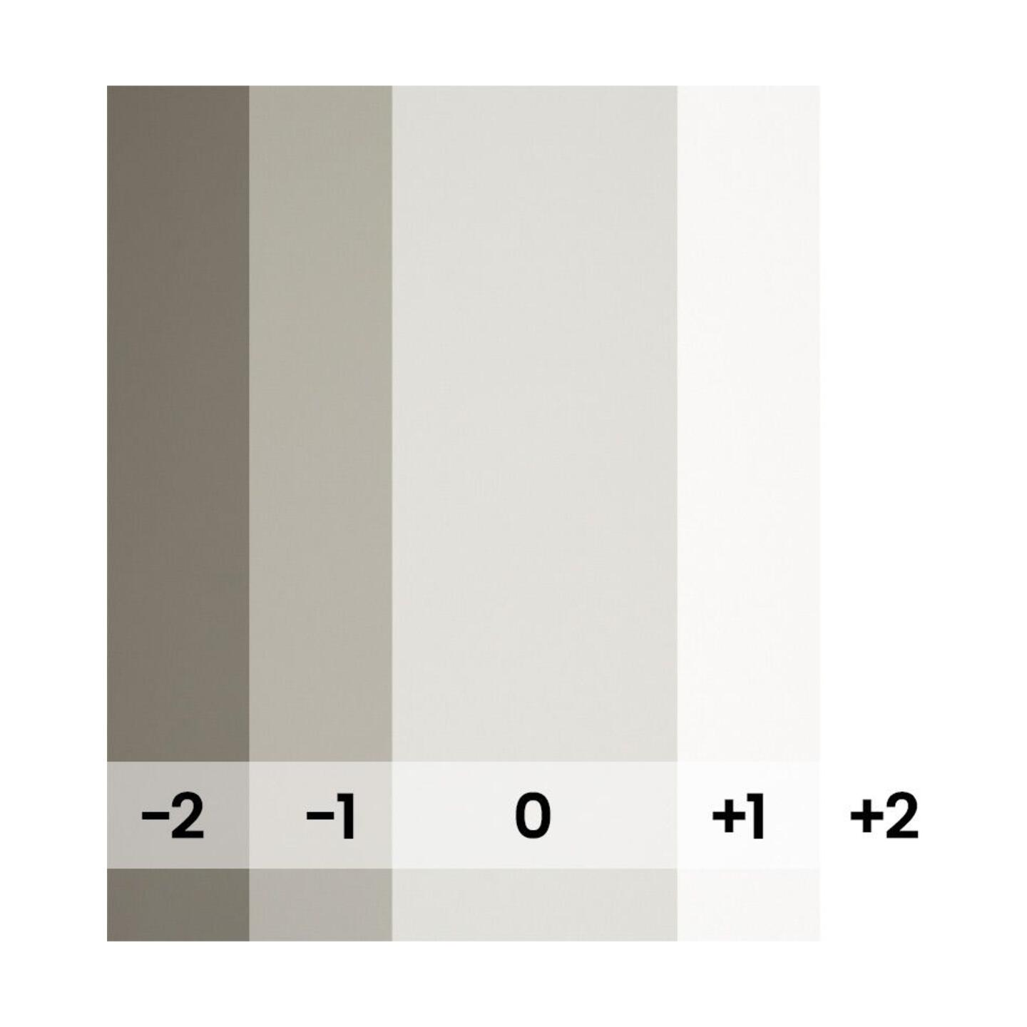 BD Backgrounds Photographer's Gray : 1,35 m