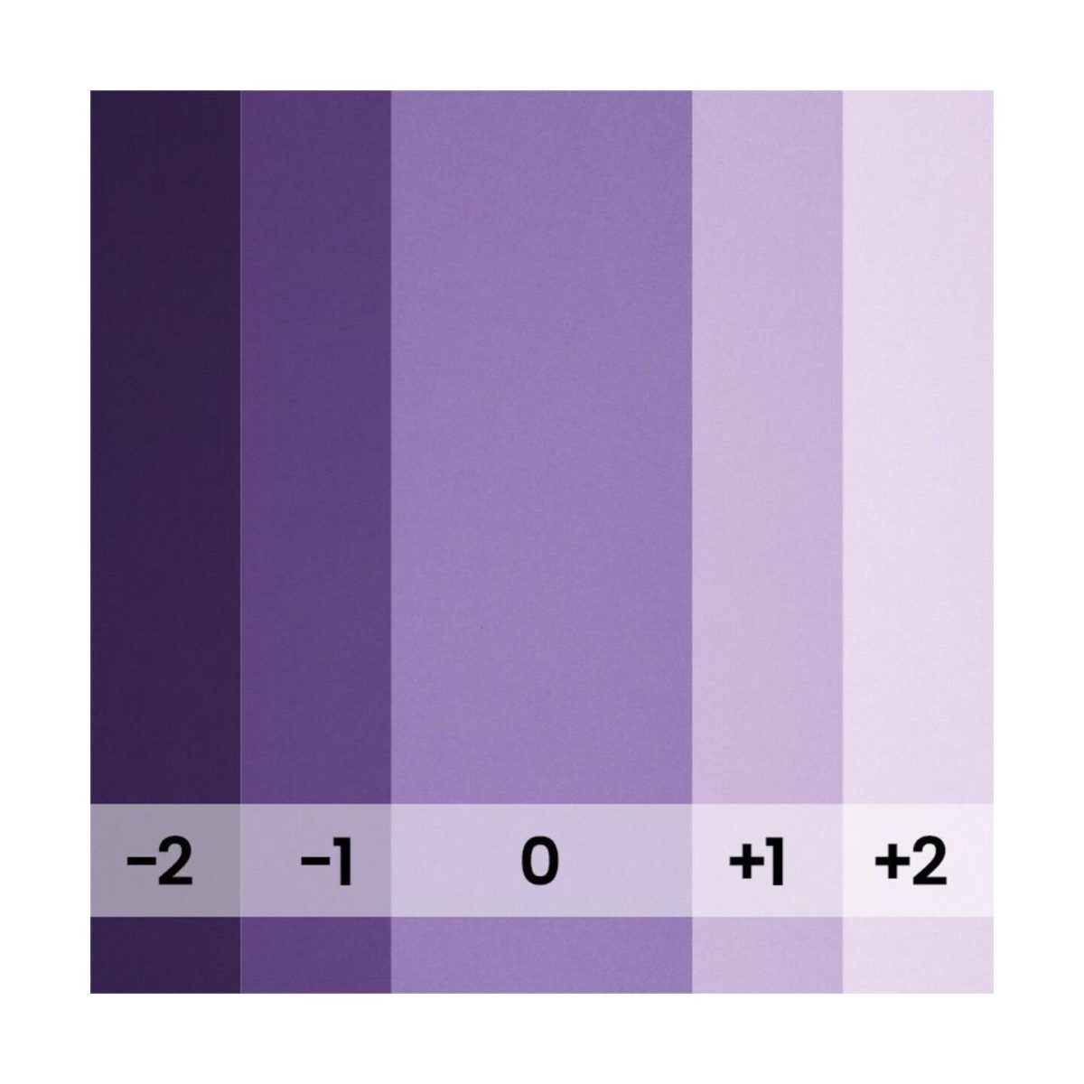 bd_backgrounds_154_purple_03