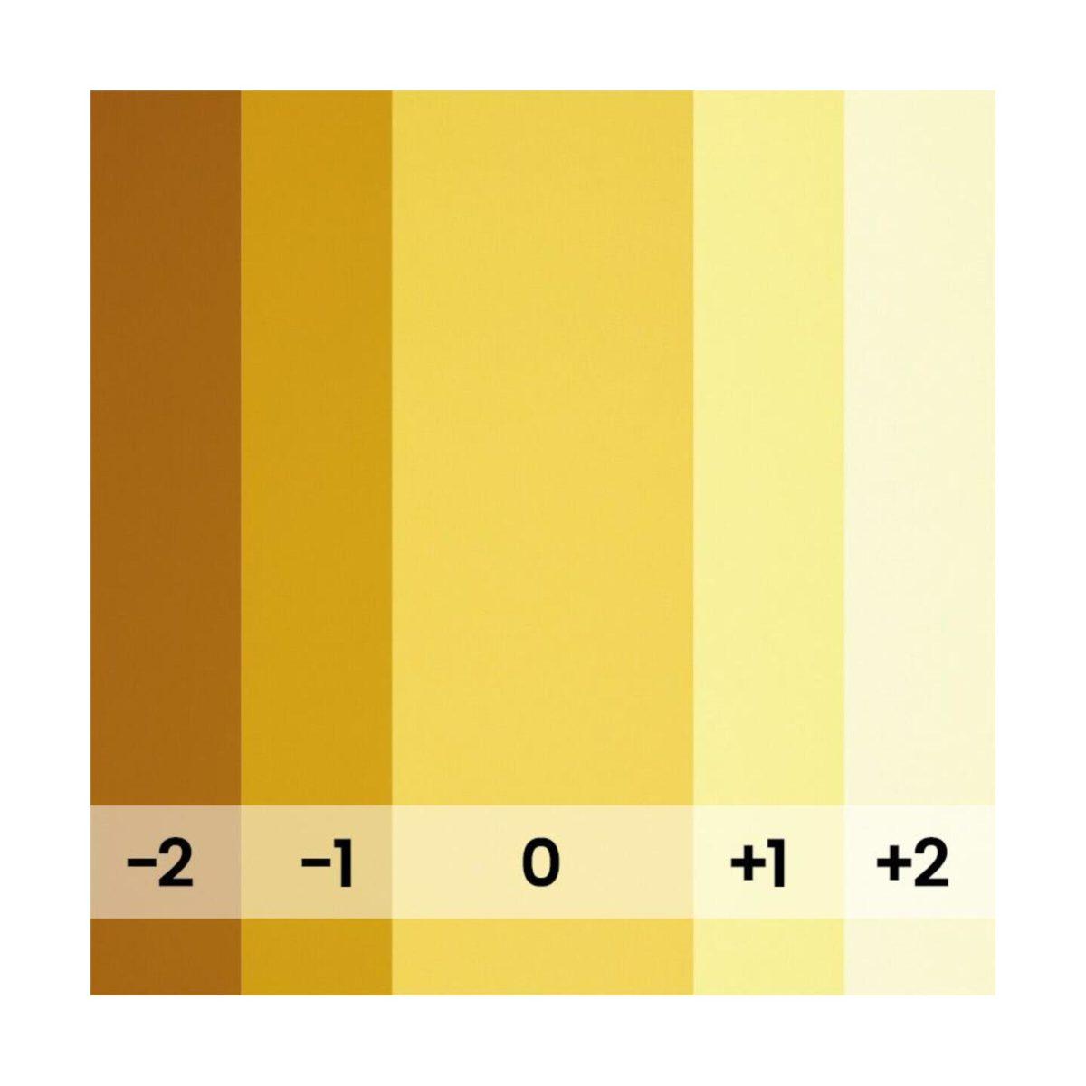 bd_backgrounds_169_marigold_03